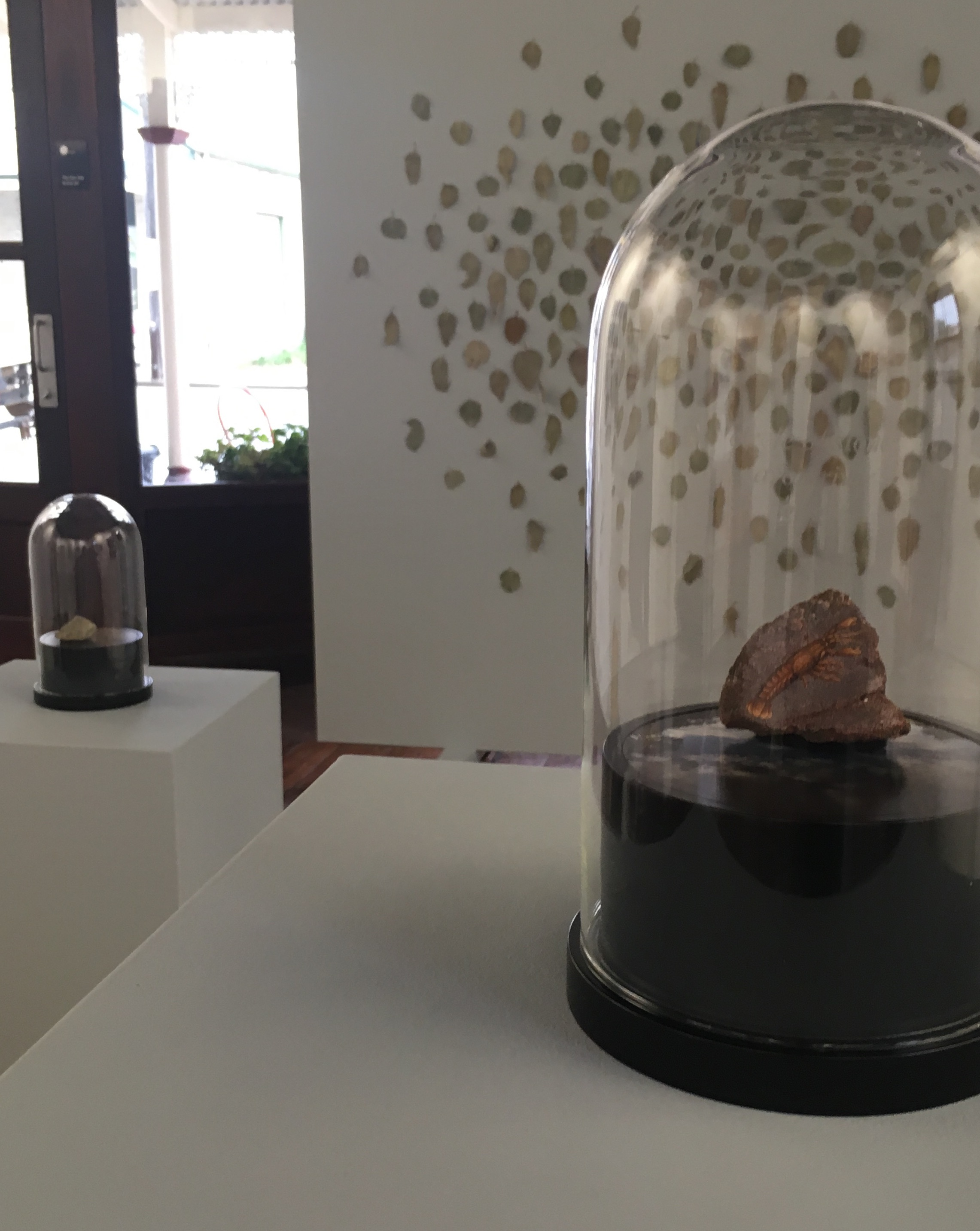 Installation View, Circle of Stones, Gallery 152, York, WA. In the foreground, circle of stones, avon river, gilgie,  River rock, gouache, colour photograph on dibond, wooden base and etched glass dome 15d x 27h cm. 2017-18.