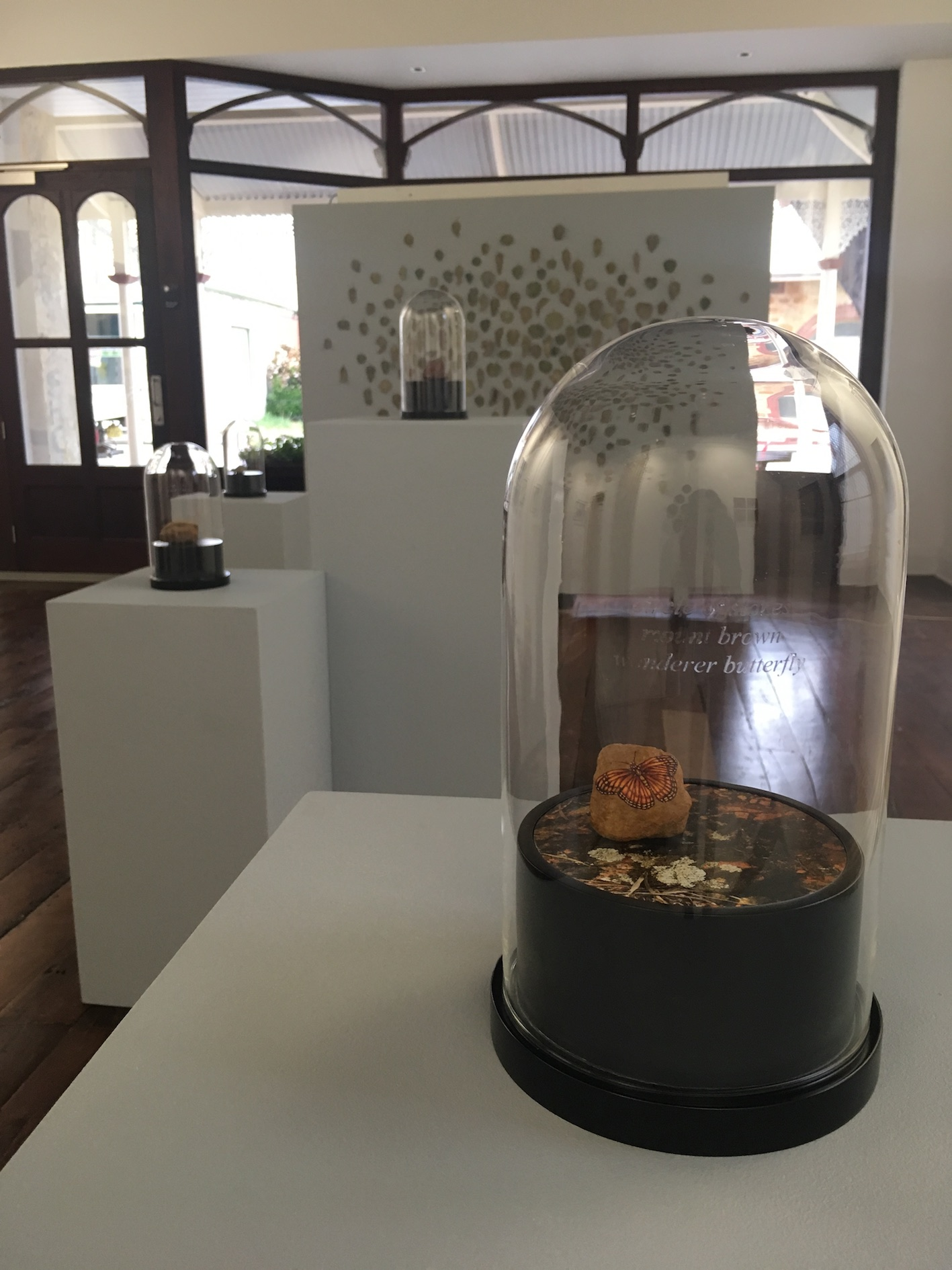 Installation View, Circle of Stones, Gallery 152, York, WA. In the foreground, circle of stones, mount brown, wanderer butterfly.  Mountain rock, gouache, colour photograph on dibond, wooden base and etched glass dome 15d x 27h cm. 2017-18