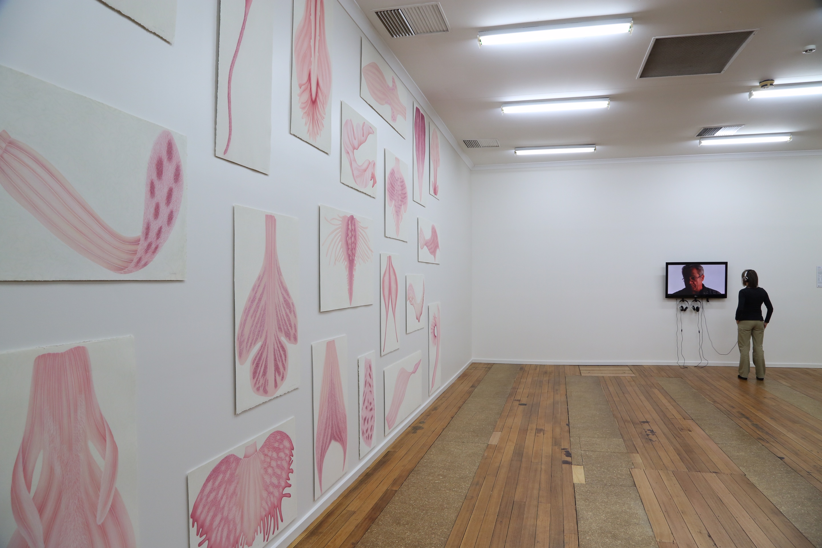 Mother Tongue, Installation View Mother Tongue, 2013, 20 drawings, each titled after one of the 20 regions of Italy, pastel on paper, overall 345h x 615w cm, 2013 Alphabet sound component, duration 4:43, Documentary Film, duration 15:29.